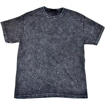 Vêtements Homme T-shirts manches courtes Colortone Mineral Noir