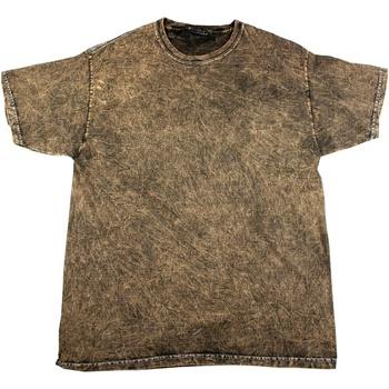 Vêtements Homme T-shirts manches courtes Colortone Mineral Marron