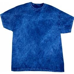 Vêtements Homme T-shirts manches courtes Colortone Mineral Bleu marine