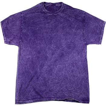Vêtements Homme T-shirts manches courtes Colortone Mineral Pourpre