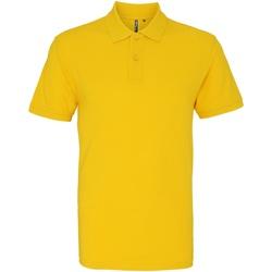 Vêtements Homme Polos manches courtes Asquith & Fox AQ010 Tournesol