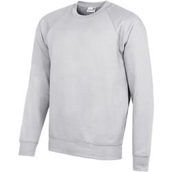 Vêtements Homme Sweats Awdis Academy Gris