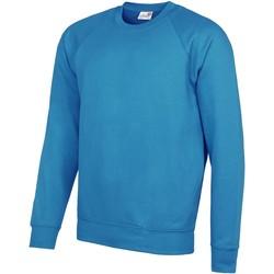 Vêtements Homme Sweats Awdis Academy Bleu ciel