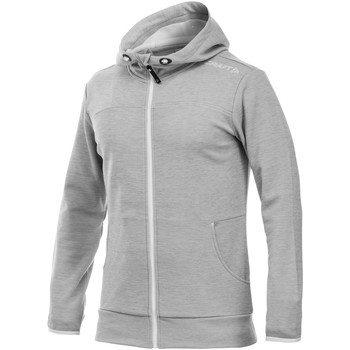 Vêtements Homme Sweats Craft Athletic Gris