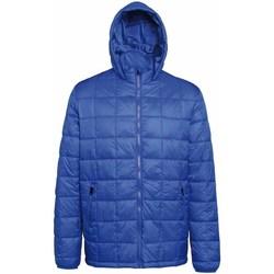 Vêtements Homme Doudounes 2786 Hooded Bleu roi