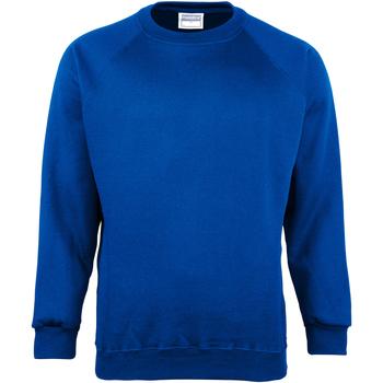 Vêtements Homme Sweats Maddins Coloursure Bleu roi