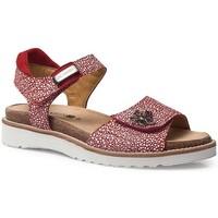 Chaussures Femme Sandales et Nu-pieds Calzamedi SANDALES  EURIA ROUGE