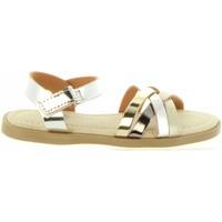 Chaussures Fille Sandales et Nu-pieds Destroy K115693 Plateado