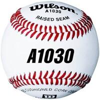 Accessoires Homme Accessoires sport Wilson Balle de Baseball Officielle  A1030 594
