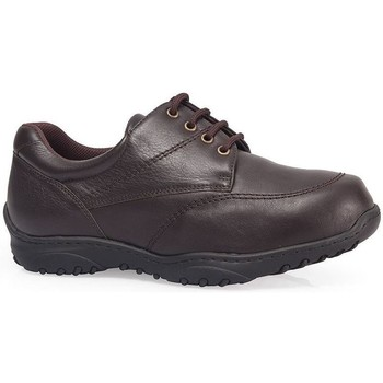 Chaussures Derbies Calzamedi Cordons confortables occasionnels MARRON