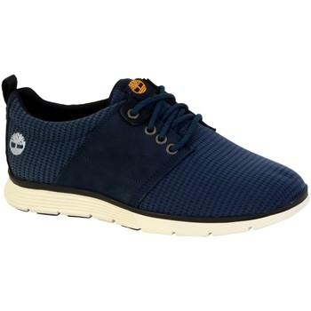 Chaussures Homme Baskets basses Timberland Chaussure  Killington L/F Oxford Bleu
