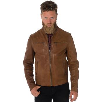 Vêtements Homme Vestes en cuir / synthétiques Daytona TRITON COW VEG GOLD Cognac