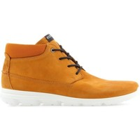 Chaussures Homme Boots Ecco Mens  Calgary 834334-59685 brązowy