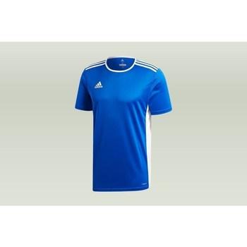 Vêtements Homme T-shirts manches courtes adidas Originals Entrada 18 bleu