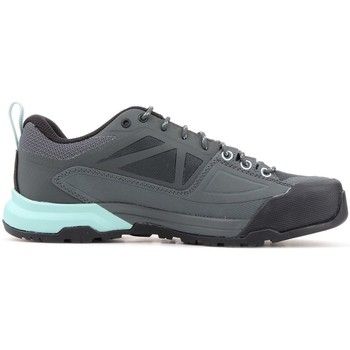 Chaussures Femme Baskets basses Salomon X Alp Spry Gtx Gris