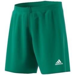 Vêtements Homme Shorts / Bermudas adidas Originals Parma 16 Vert