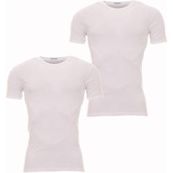 T-shirts manches courtes Eminence Lot de 2 Tee-shirts col rond  en pur coton Blanc