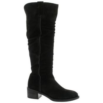 Chaussures Femme Bottes Alpe Bottes cuir velours Noir