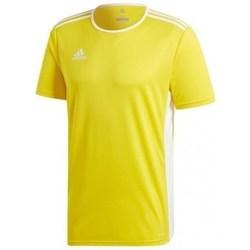Vêtements Homme T-shirts manches courtes adidas Originals Entrada 18 Jsy jaune