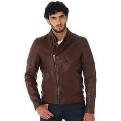 Vêtements Homme Vestes en cuir / synthétiques Daytona 73 TRUCKSTON COW VEG BRANDY Bordeaux