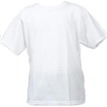 Vêtements Garçon T-shirts manches courtes Gildan Heavy kids blanc mc Blanc