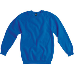 Vêtements Enfant Sweats Sg Raglan Bleu royal