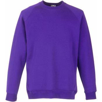 Vêtements Enfant Sweats Fruit Of The Loom Raglan Violet