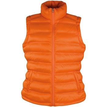 Vêtements Femme Doudounes Result Ice Bird Orange