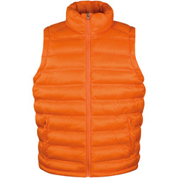 Vêtements Homme Doudounes Result Padded Orange