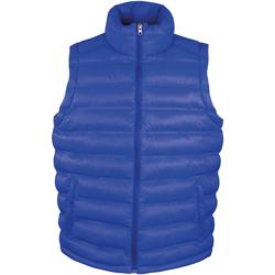 Vêtements Homme Doudounes Result R193M Bleu roi