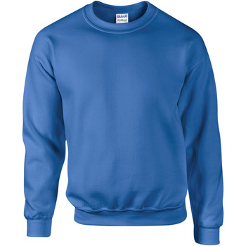 Vêtements Homme Sweats Gildan DryBlend Bleu royal