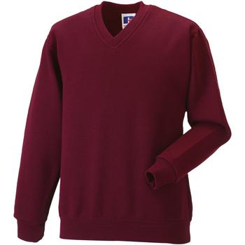 Vêtements Enfant Sweats Jerzees Schoolgear 272B Bordeaux