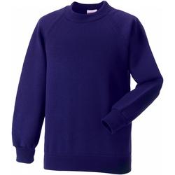 Vêtements Enfant Sweats Jerzees Schoolgear Raglan Violet