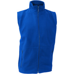 Vêtements Homme Gilets / Cardigans Result Active Bleu royal