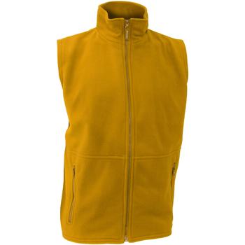 Vêtements Homme Gilets / Cardigans Result Active Jaune