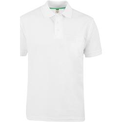 Vêtements Homme Polos manches courtes Duke D555 Blanc
