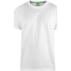 Vêtements Homme T-shirts manches courtes Duke D555 Blanc