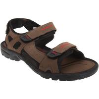 Chaussures Homme Sandales sport Pdq  Marron