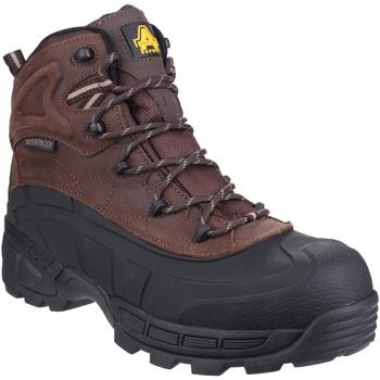 Chaussures Homme Chaussures de sécurité Amblers  Marron