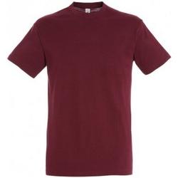 Vêtements Homme T-shirts manches courtes Sols 11380 Bordeaux