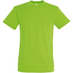 Vêtements Homme T-shirts manches courtes Sols Regent Vert
