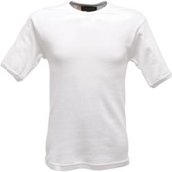 Vêtements Homme T-shirts manches courtes Regatta RG288 Blanc