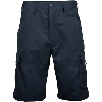 Vêtements Homme Shorts / Bermudas Rty Workwear Work Bleu marine