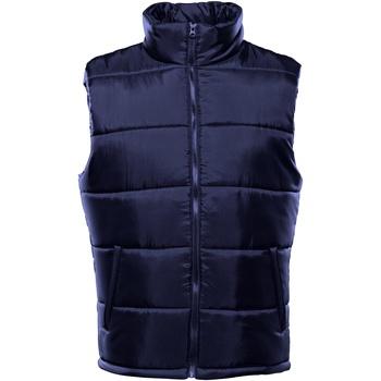Vêtements Homme Doudounes 2786 TS015 Bleu marine