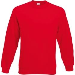 Vêtements Homme Sweats Fruit Of The Loom Premium Rouge
