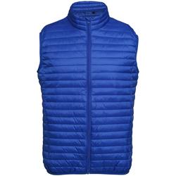 Vêtements Homme Doudounes 2786 Fineline Bleu roi