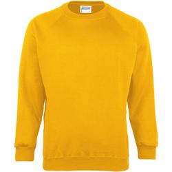 Vêtements Enfant Sweats Maddins Coloursure Tournesol